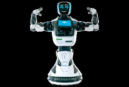 Аренда промо роботов